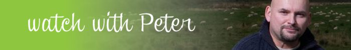 1 a 1 a bestels watchwithpeter