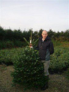Rory Young with one of his locally grown Christmas trees