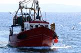 Fishermen Brexit ready