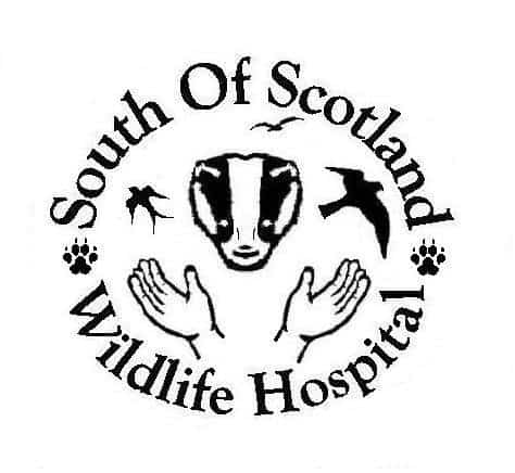 South Scotland Wildlife Hospital Australia Appeal