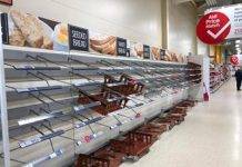 Supermarkets to join forces to feed the nation
