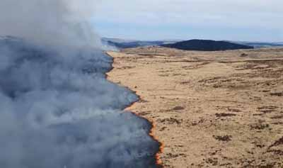 FIRE CREWS PRAISED FOR EXTINGUISHING 4000 ACRE GALLOWAY FOREST PARK FIRE