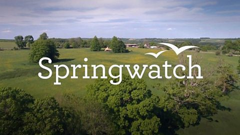 BBC Two's Springwatch announces guest presenters, Steve Backshall, Ellie Harrison, Gordon Buchanan and Megan McCubbin