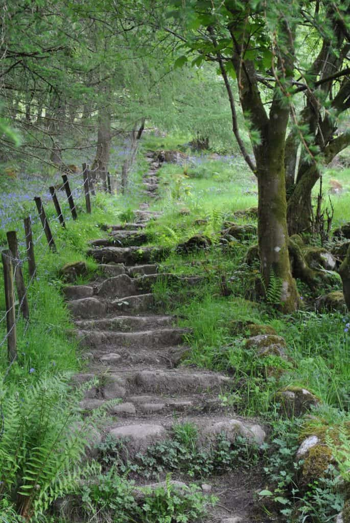 """""""Plan your walk, walk your plan"""" - Mountain safety and outdoor access advice"""