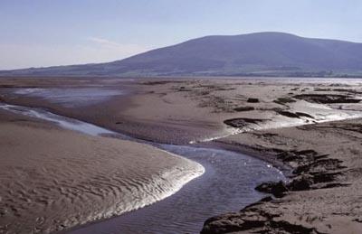 Winning videos celebrate nature reserves across Scotland