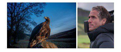 Filmmaker Gordon Buchanan Launches UK's First Golden Eagle Festival in Moffat