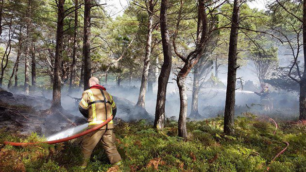 Help prevent wildfires on our nature reserves