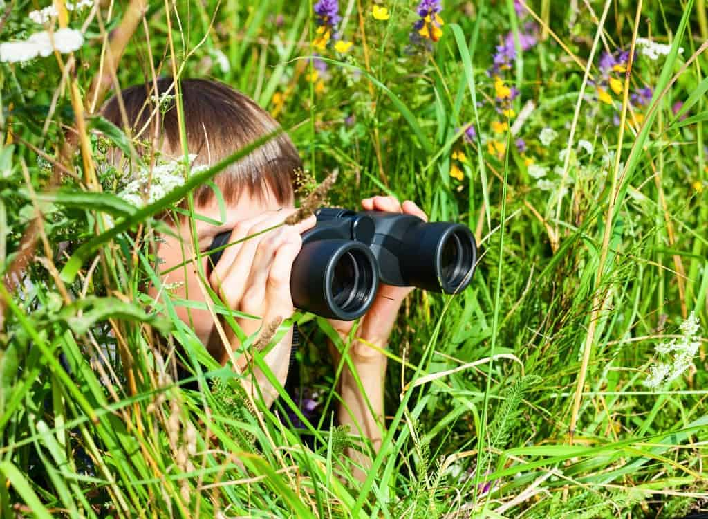 Galloway and Southern Ayrshire UNESCO Biosphere Launch YOUNG NATURE BLOGGER Challenge