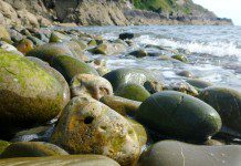 Be a Pebble Detective! The Scottish Geology Festival comes to Kirkcudbright's Doon Beach